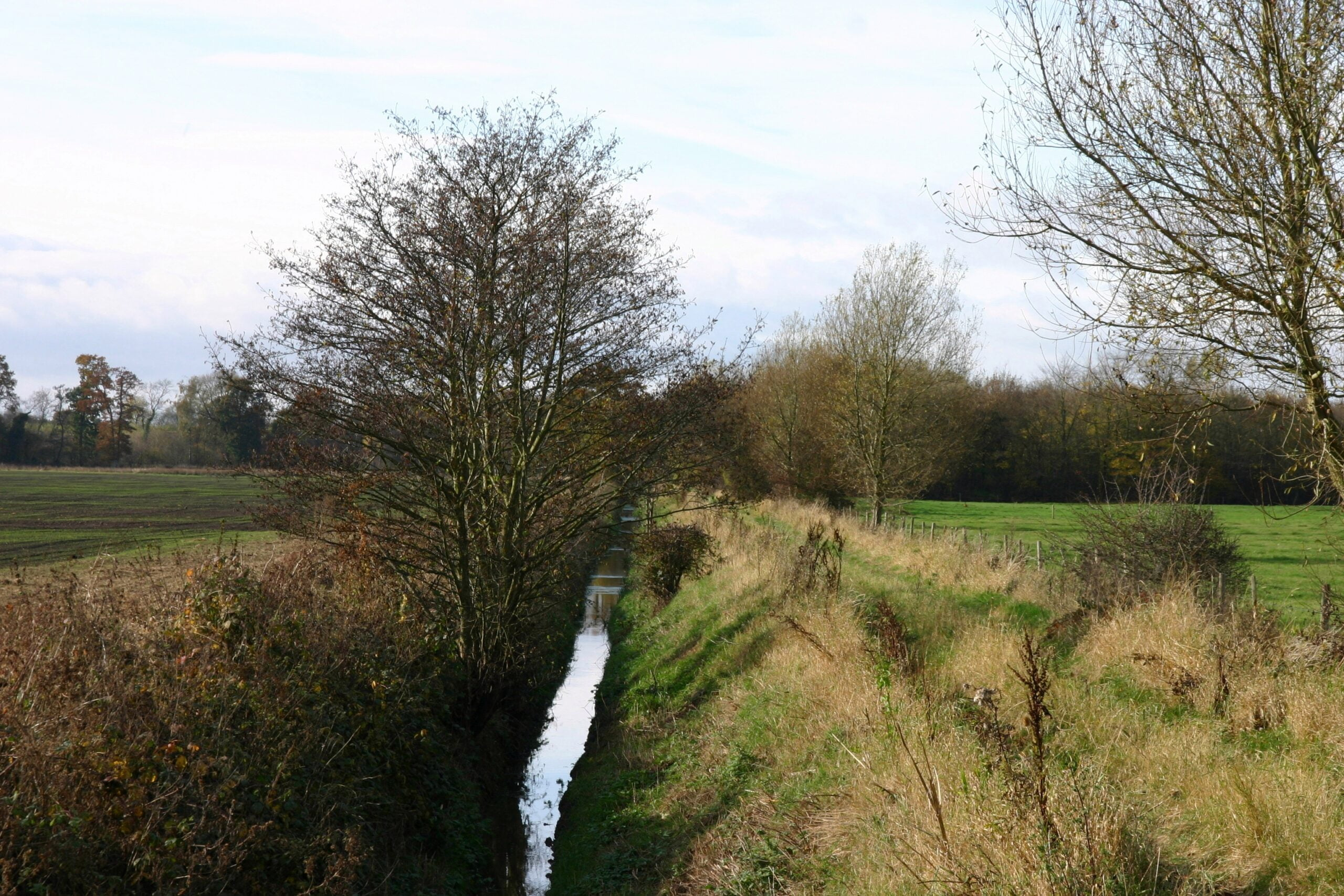 a-19th-century-east-west-drainage-channel-on-rodway-moor