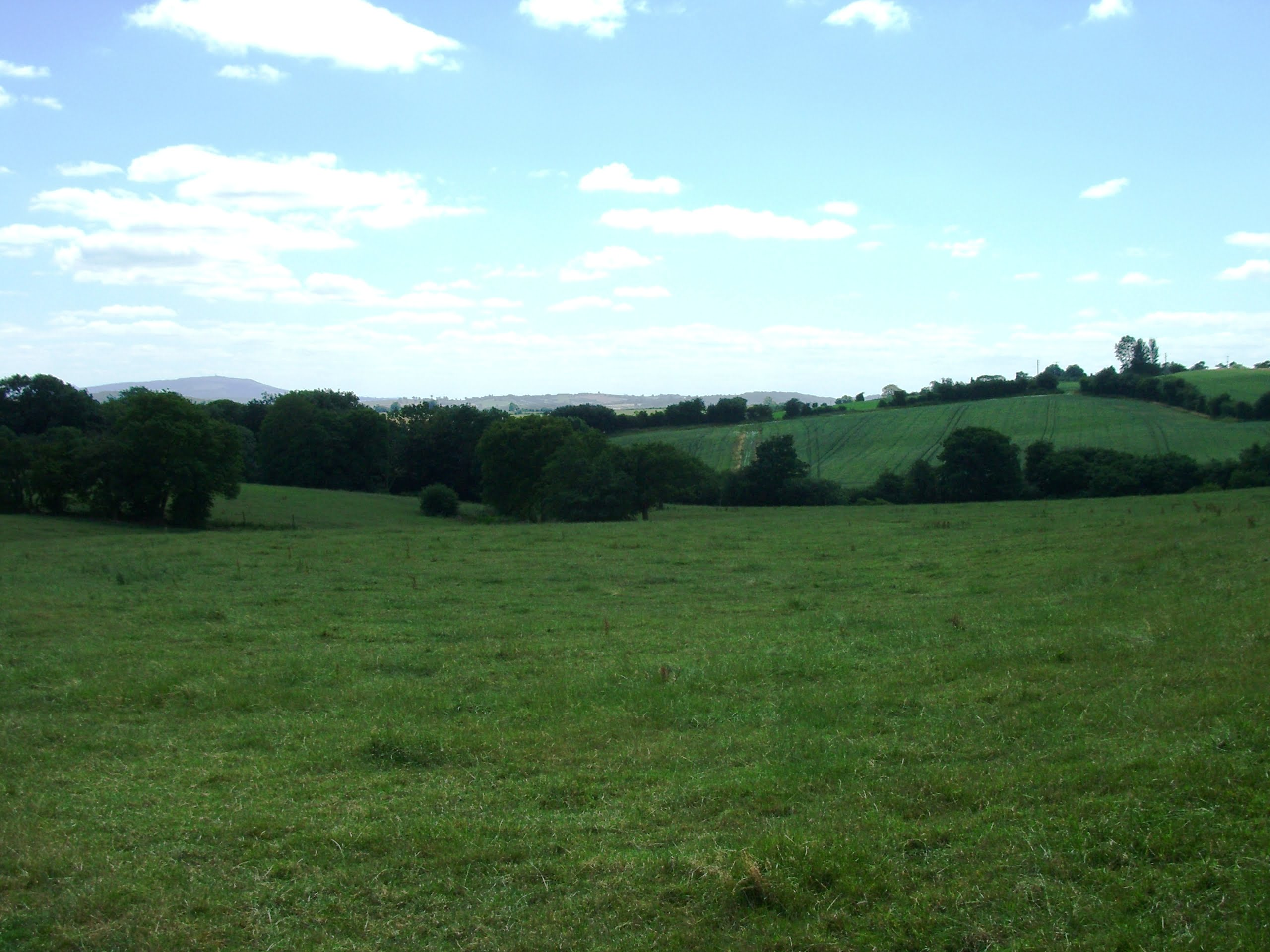 looking-towards-coalmoor