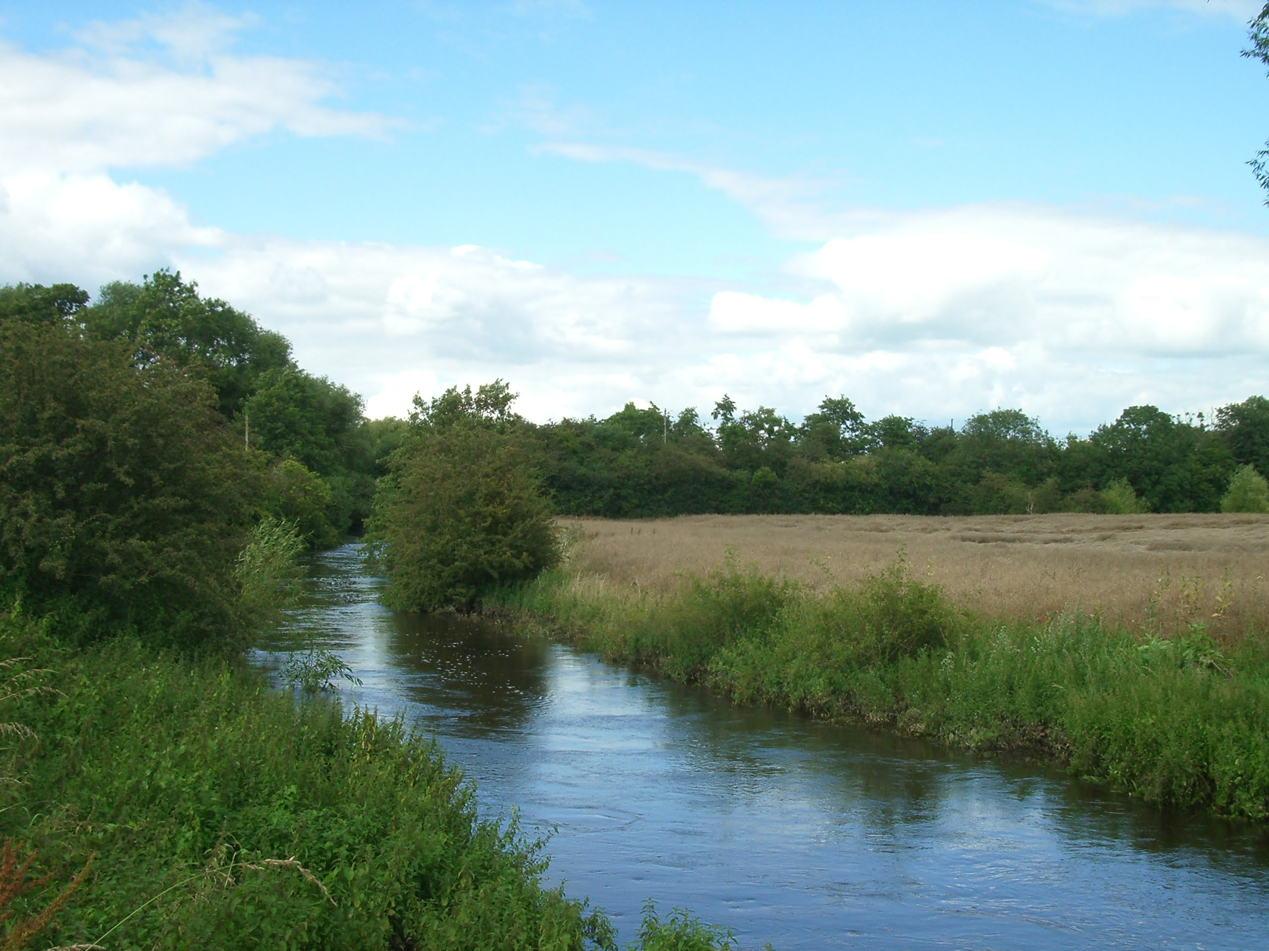 The-River-Roden