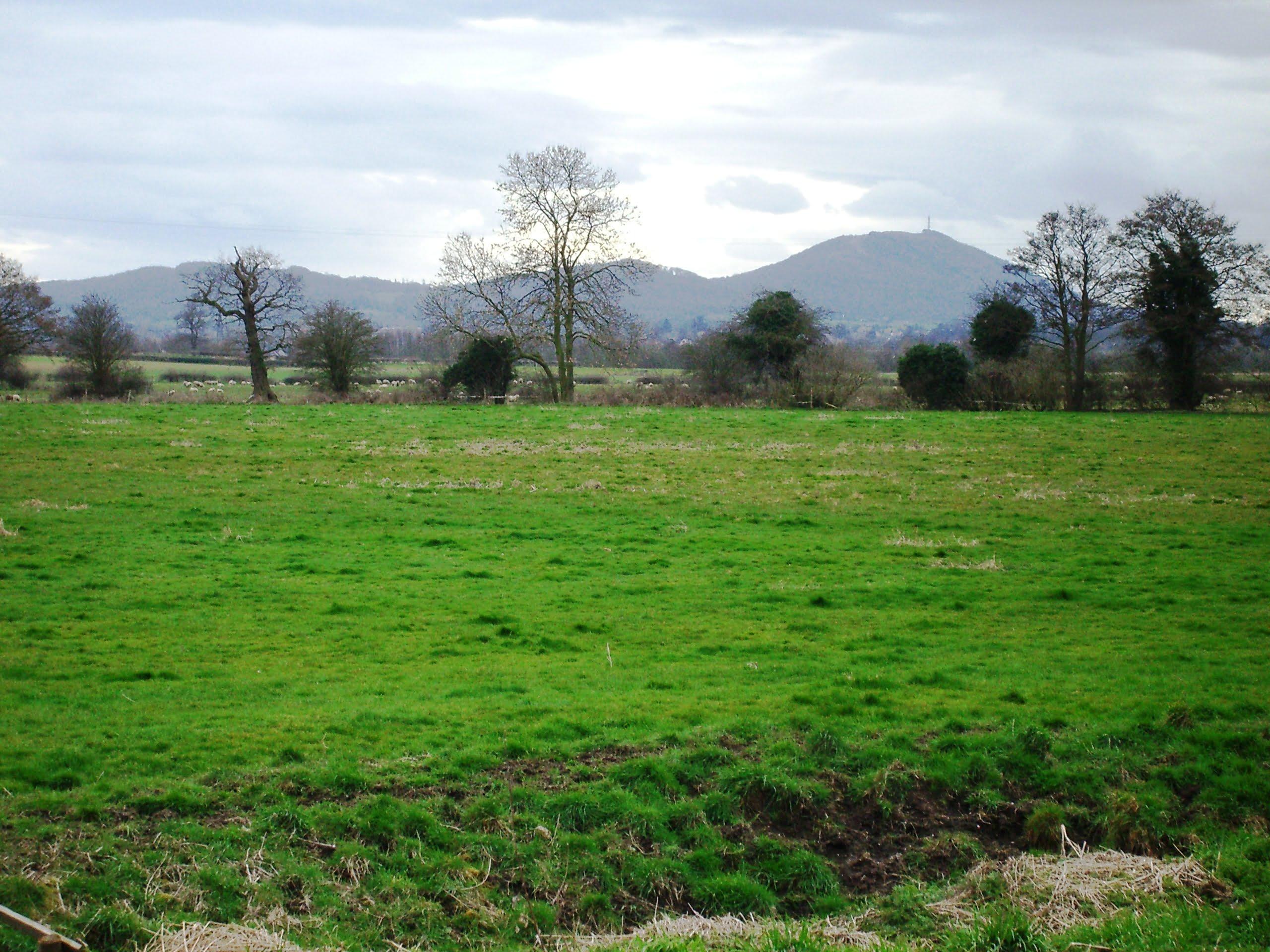 The-Wrekin-from-Preston-Moor