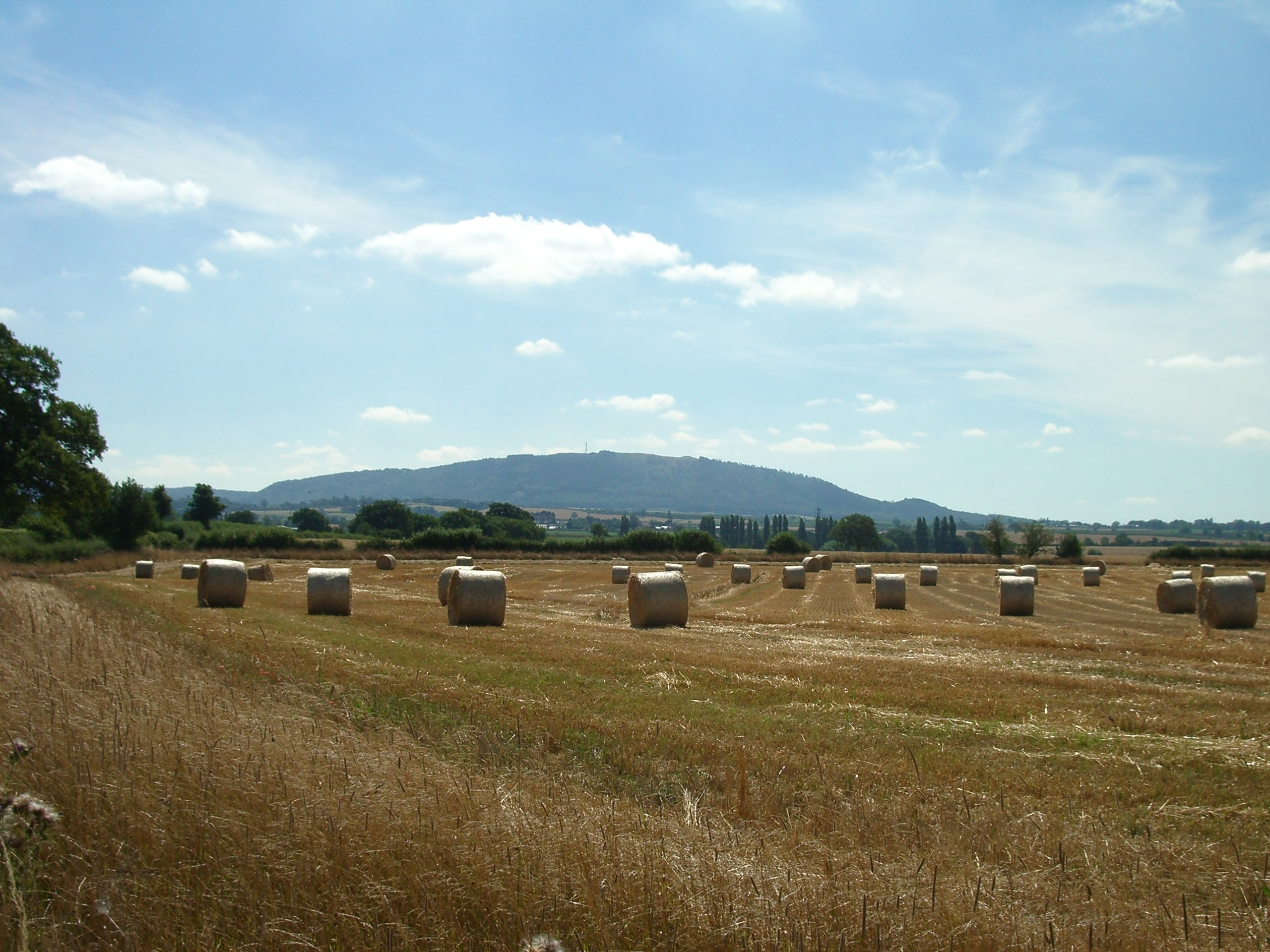 The-Wrekin-from-Withington